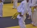 Champ-Interne-017 -010